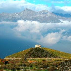 I grandi vini della ValleD'Aosta